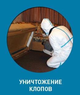 Уничтожение клопов в Красноярске