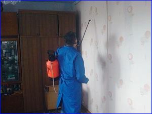 уничтожение тараканов в квартире специалистами