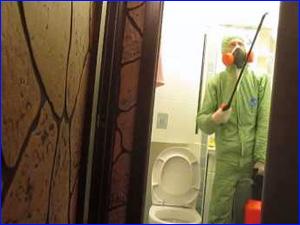 безопасное уничтожение тараканов в гостинке и коммуналки