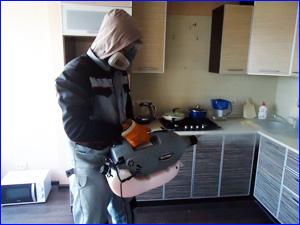 Качественное уничтожение и дезинфекция тараканов на кухне в квартире
