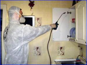 способы уничтожения тараканов на кухне