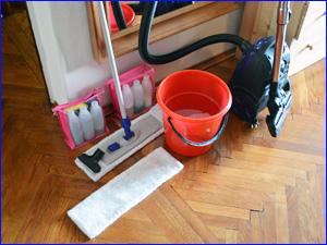 Инвентарь клининговой компании для уборки квартиры