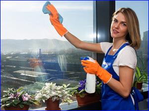 Профессиональное мытье окна клинером